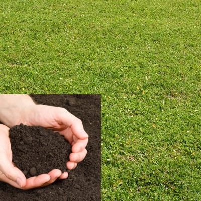 Lawn Mix Topsoil (General Use)