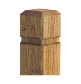 Shaped Posts PAO Pressure Treated